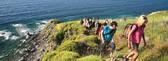 Meditieren und Wandern auf der Kraftinsel Lesbos
